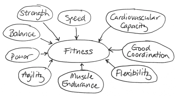 Components of Fitness « Elite Coach & Consultant